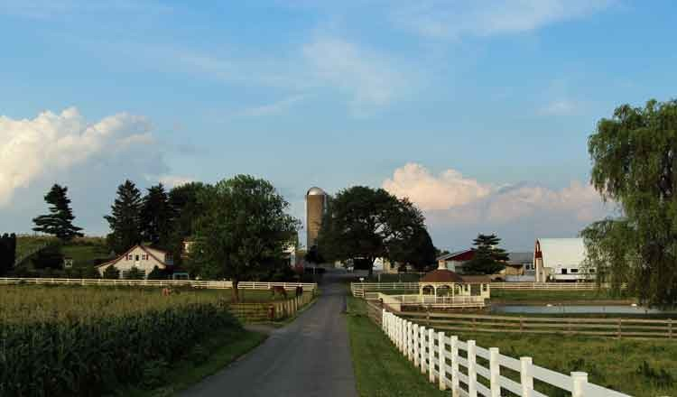 Country Lane Amish Farm Stay